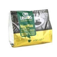 Café liégeois - Magnifico
